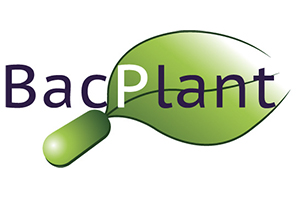 BacPlant - Towards a sustainable agriculture by increasing p ... Imagem 1