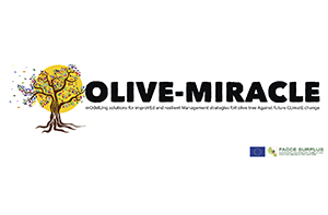 Olive-Miracle - ModellIng solutions for improved and Resilie ... Imagem 1